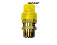 "Safety Valve 2004-1 1/2"" BSP 1,600KPA"