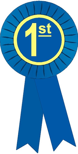1st Place Stock Place Ribbon