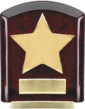 Rosewood Bevel Award with Gold Star