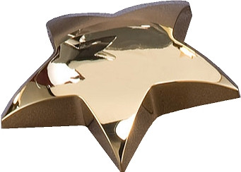 gold star paperweight