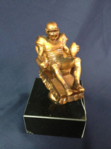 Fantasy Football Award - Arm Chair Quarterback