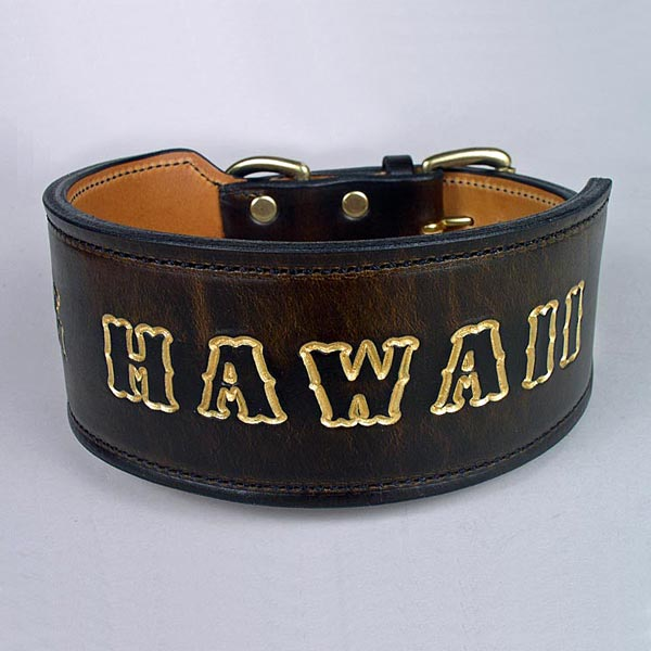 hawaii-dog-collar-1-sq.jpg