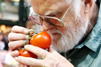 mike-tomato.jpg