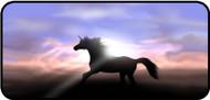Magic Hooves
