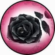 Black Rose BR