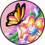 Flutter BR