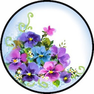 Pansy Blue BR