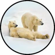 Polar Bears BR