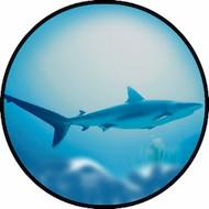 Shark BR