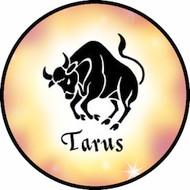 Taurus BR