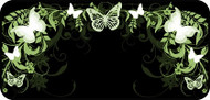 Flutterby Black & Green