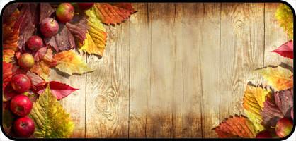 Fall Apple Border Teddy S Rainbow