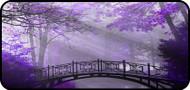 Lavender Bridge