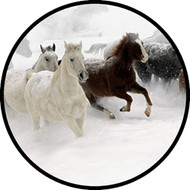 Blizzard Run BR