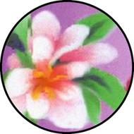 Blossom BR