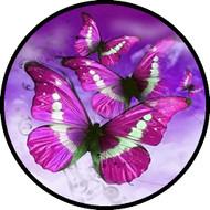 Kites of Pink BR
