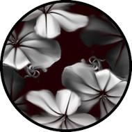 Moon Flower BR