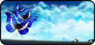 Kites of Blue