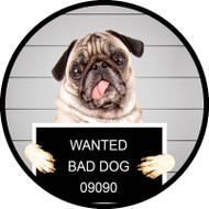 Pug Crime BR