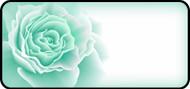 Rose Bloom Aqua