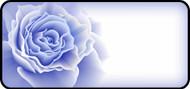 Rose Bloom Blue