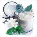 Coconut Ice - Premium Artisan E-Liquid | ECBlend Flavors