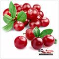 Cranberry - Premium Artisan E-Liquid | ECBlend Flavors