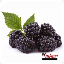 All Natural Blackberry 100% VG E-Liquid at ECBlend Flavors