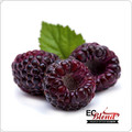 All Natural Black Raspberry 100% VG