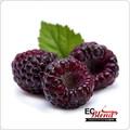 Black Raspberry - 100% VG All Natural Premium Artisan E-Liquid | ECBlend Flavors