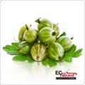 Gooseberry - 100% VG All Natural Premium Artisan E-Liquid | ECBlend Flavors