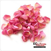 Rose Petal E-Liquid by ECBlend