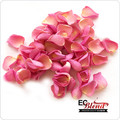 Rose Petal E-Liquid by ECBlend
