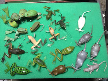 Plummer and Burke Frogs and Mice