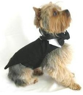 Dog Tuxedo Set by Doggie Design