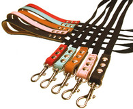 Buddy Belt Accent Leather & Nylon Leash
