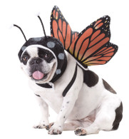 Butterfly Dog Costume by Animal Planet