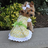 Emily Yellow Floral & Lace Dress with matching leash