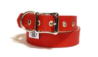 Buddy Belt Classic Leather Collar