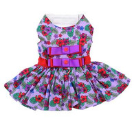 Floral Purple/Red Dress with matching leash