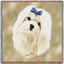Maltese White by Robert May Lap Square