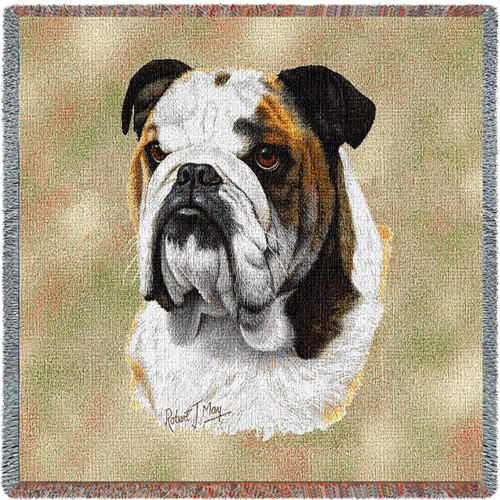 Bulldog - Robert May - Lap Square Cotton Woven Blanket Throw - Made in the USA (54x54) Lap Square