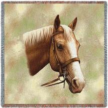 Palomino Horse by Robert May Lap Square