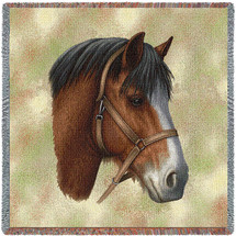 Clydesdale Horse by Robert May Lap Square