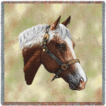 Appaloosa Horse - Robert May - Lap Square Cotton Woven Blanket Throw - Made in the USA (54x54) Lap Square