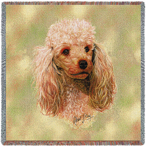 Poodle Cream by Robert May Lap Square