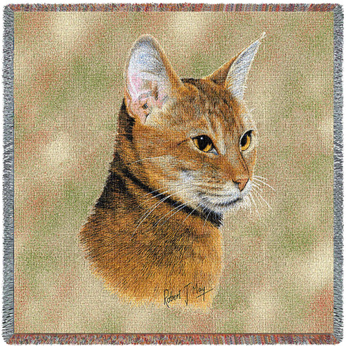 Abyssinian Cat by Robert May Lap Square