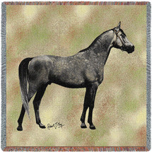 Endurance Arabian Horse by Robert May Lap Square