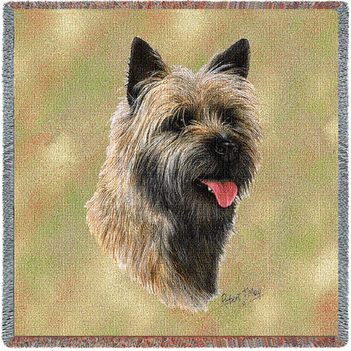 Cairn Terrier - Lap Square
