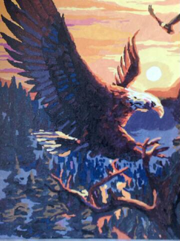 Eagle by Ian